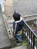 image/tsunodama-2006-01-09T10:21:12-1.jpg